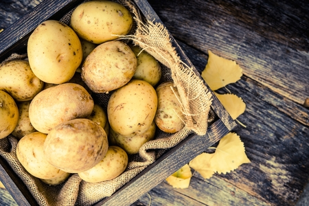 Raw Organic Golden Potatoes in the Wooden Crate on Aged Wood Planks Table. Archivio Fotografico