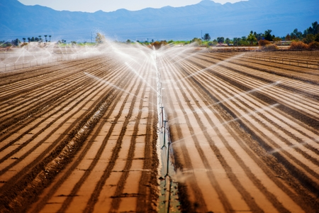 irrigate: California Agriculture. Soil Watering Irrigation System.
