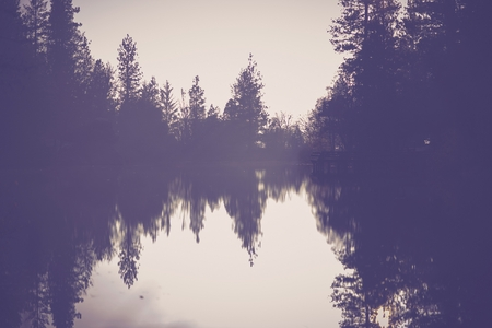 grading: The Foggy Lake Scenery. California Foggy Lake in Purple Color Grading. Lake Background.