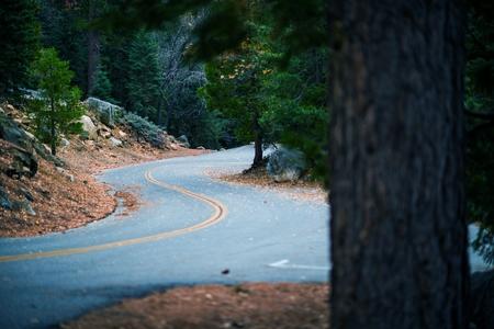 bernardino: San Bernardino Mountain Road near Idyllwild, Pine Cove, California, USA.