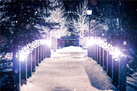 season greetings: Park Bridge Holiday Illumination in Winter Season. Estes Park, Colorado.
