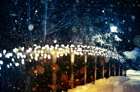 blurred lights: Holiday Lights Scenery. Winter Night in the Park with Seasonal Lighting Decoration and the Lantern