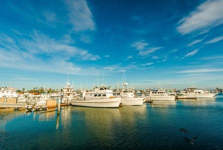 Marina in San Diego North Bay, California, United States. Boats in the Marina. photo