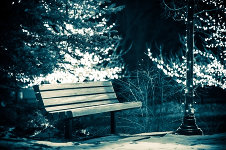 Park Bench in Winter. Wooden Bench in the Public Park and Holiday Lights on Trees Around. Dark Blue Color Grading photo