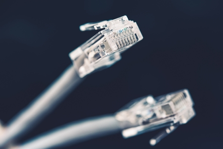 networking cables: Network Cable Plugs Closeup Photo. Computer Networking Cables. Stock Photo