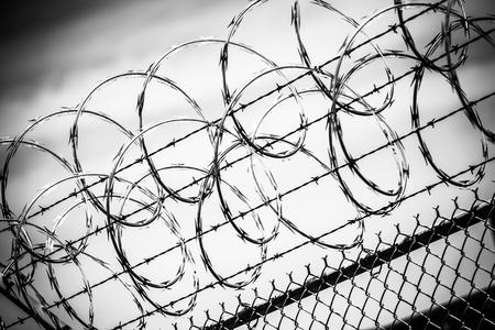 derecho penal: Cerca de alambre de p�as. Valla prisi�n en Blanco y Negro Primer.