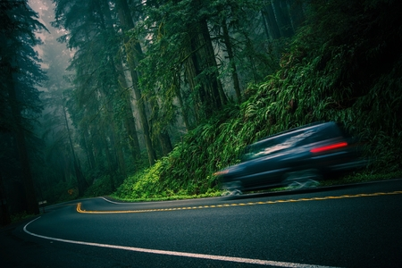 scenic highway: California 101 Foggy Redwood Highway and Speeding Car. Crescent City, California, United States. Stock Photo