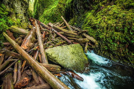 columbia: Natural Logs Dam on the Small Canyon River in Oregon Columbia Gorge Area. Oregon, United States. Stock Photo