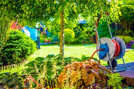 tree works: Sunny Backyard Garden with Water Hose. Home Gardening in the Summer Time. Stock Photo