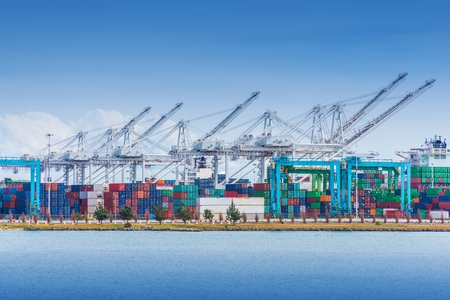 seaport: Cargo Seaport with Heavy Duty Lifts and Cargo Containers. Sea Transportation Theme.