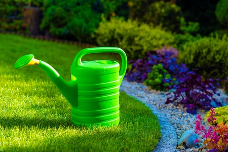 rockery: Green Plastic Watering Can in the Rockery Garden