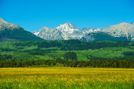 Tatra Mountains. Slovakia Side Tatra Mountains Summer Scenery. Scenic Carpathian Mountains. Slovakia, Europe.