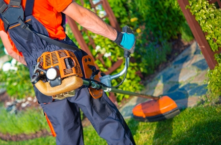 mowing grass: Shoulder Grass Mower in Action. Grass Mowing By Pro Gardener Closeup Photo.