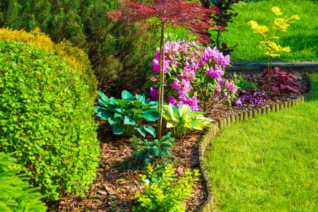 Rockery Garden Closeup. Small Backyard Rockery Garden with Blossom Flowers Stockfoto