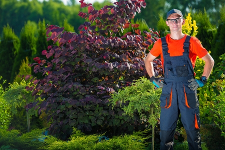 Satisfied Pro Gardener and His Beautiful Garden. Garden Design Concept.