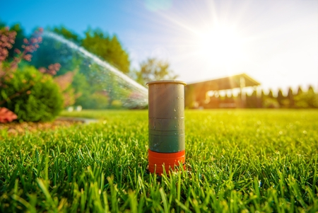 garden: Lawn Sprinkler in Action. Garden Sprinkler Watering Grass. Automatic Sprinklers.