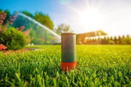 Lawn Sprinkler in Aktion. Garden Sprinkler Bewässerung Gras. Automatische Sprenganlage.