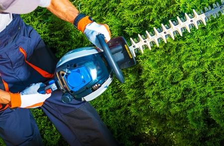 Tuinman met Zijn Benzine heggenschaar in actie. Stockfoto