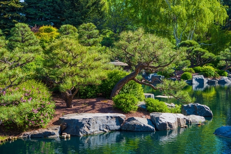 rockery: Large Rockery Garden and the Pond, Japanese Garden.