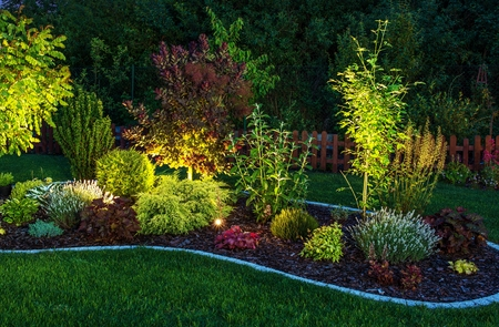 Illuminated Garden by LED Lighting. Backyard Garden at Night Closeup Photo. Archivio Fotografico