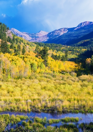 colorado landscape: Aspen Colorado Landscape Fall in Aspen, Colorado, United States. Stock Photo