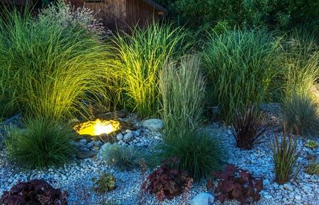 illuminated: Garden with Small Illuminated Pond
