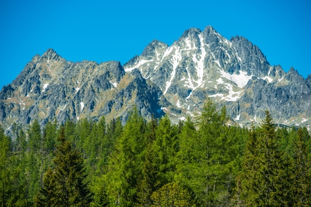 Slovakian Tatra Mountains Closeup