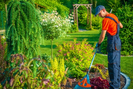 garden: Gardener with Rake at Work Stock Photo