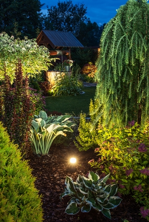 Illuminated Garden at Night with Various of Plants Stock Photo