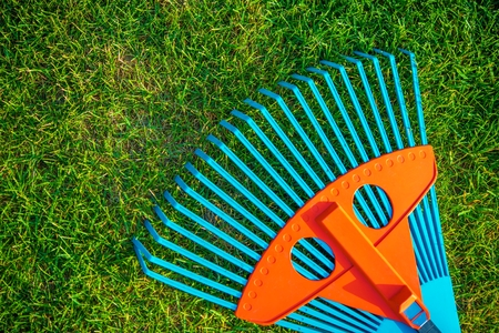 rake: Garden Rake on Grass Closeup. Garden Cleaning Concept. Gardening Theme.