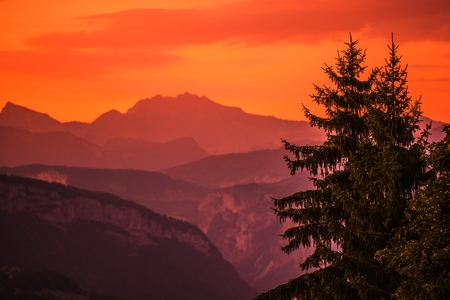 reddish: Mountains Sunset Photo Background. Scenic Reddish Sunset with Spruce Trees Over Mountains. Stock Photo