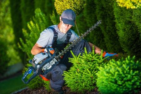 jardineros: Recorte trabaja en un jardín. Jardinero Profesional con Su Pro Equipo Jardín durante su trabajo. Plantas Gasolina Equipo Trimmer. Foto de archivo