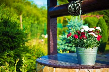 garden flowers: Decorative Flowers Bucket on a Well. Creative Backyard Garden Elements.