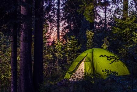 campamento: Acampar en un bosque. Tarde en la noche en un camping. Carpa Verde Iluminado Entre Spruce árboles. Estilo de vida al aire libre.