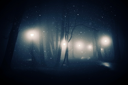 mystical: Falling Snow in the Old Foggy Park During Night Hours. Mystical Park. Stock Photo