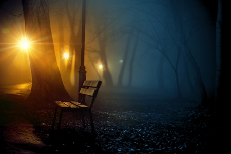 late fall: Old City Park in a Dense Fog. Park Bench. Late Fall. Spooky Park.