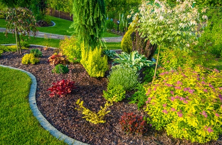 Petit Backyard Garden Gros plan Photo.