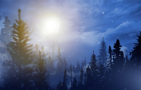 Winter Wilderness Abstract Illustration. Mountain Landscape, Falling Snow and the Moon.