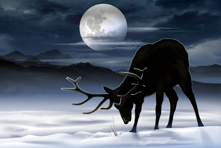 Elk Winter Meadow Illustration. North American Elk Looking For Food During the Night. Фото со стока