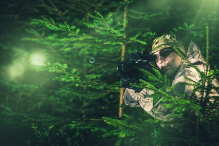 poacher: Hunting Poacher in Dense Pine Forest. Hunter in Camouflage with Hunting Rifle.