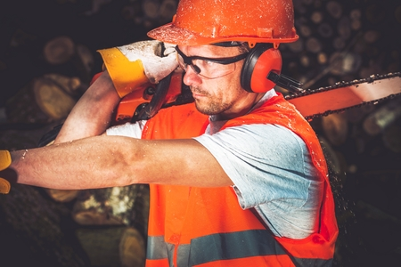 forestry industry: Timber Works Lumber Worker. Men with Wood Cutter Wearing Safety Helmet and Wearing Closeup Photo.