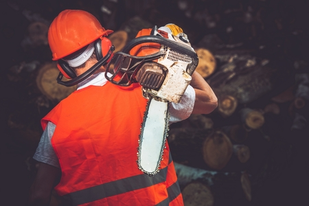 forestry industry: Hard Worker with Wood Cutter. Labor Concept Photo. Lumber Industry.