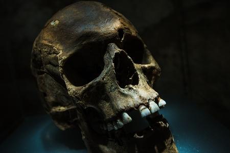 tragedies: Ancient Human Skull in Dark Place Closeup Photo.
