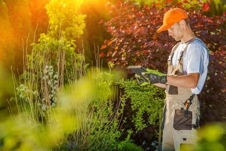 paysagiste: Gardener travail sur Tablet. Paysagiste et Design Jardin Affichage sur l'ordinateur tablette. Banque d'images