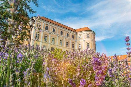 grain fields: Mikulov Castle in South Moravia, Czechia, Europe. Mikulov Castle in Summer. Editorial