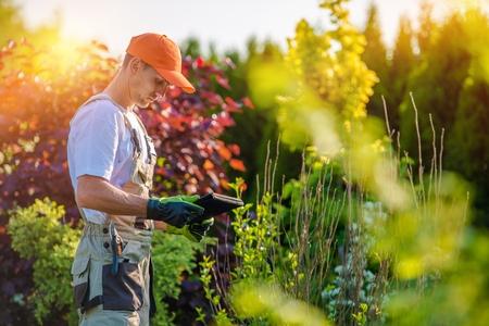paysagiste: Garden Design avec tablette périphérique. Jardinier professionnel avec son ordinateur tablette. Banque d'images