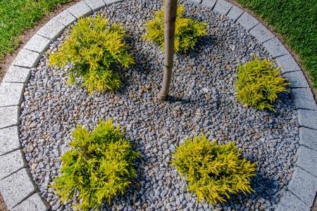 garden design details circular garden spot with plants stock photo 62415840 - Garden Spot