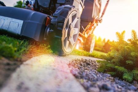 芝生を刈るのクローズ アップ写真。プロの造園作品。草をカットしました。