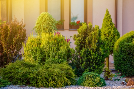 tree works: Beautiful Home Garden. Rockery Garden in Front of the House.