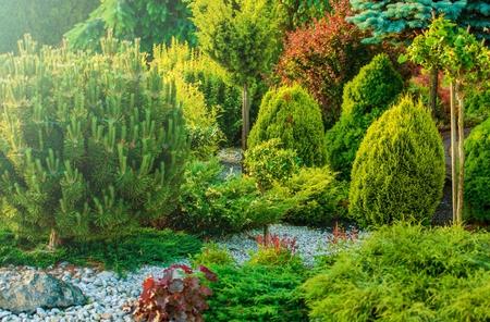 tree works: Full of Plants, Beautiful Home Garden. Residential Gardening.
